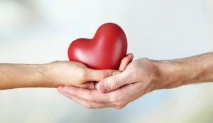 Comisión de Diputados destaca alcances de donar órganos