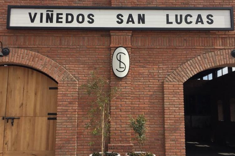 Viñedos San Lucas, fascinante experiencia en San Miguel de Allende