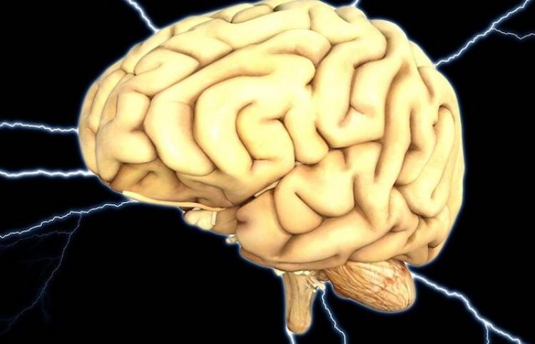 Inauguran Centro Educativo en el Instituto de Neurología y Neurocirugía