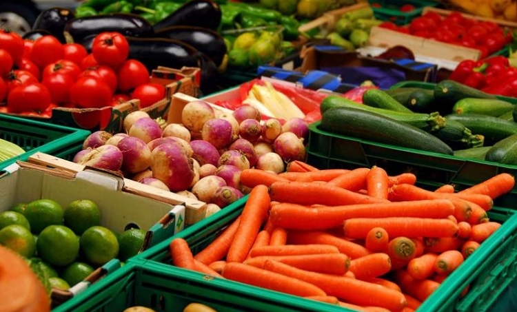 Exportación de alimentos alcanzará 35 mil mdd en 2018