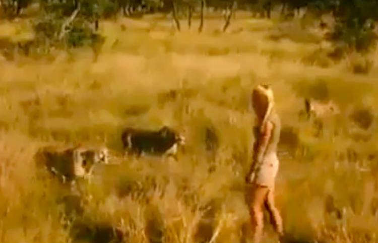 Chica convive con cheetahs en un rancho de Namibia
