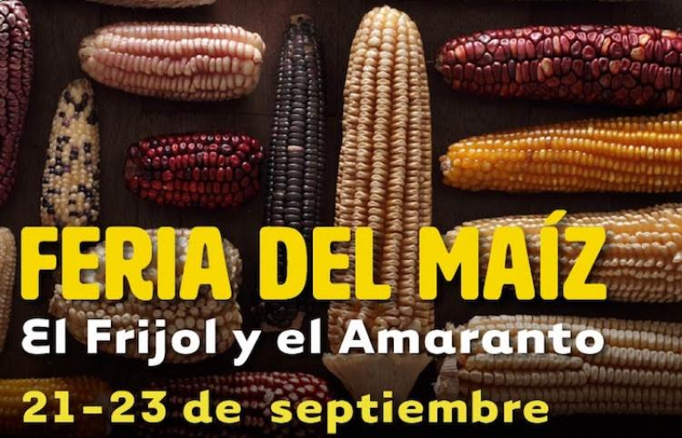 Este fin de semana ¡Feria del maíz, el frijol y el amaranto!