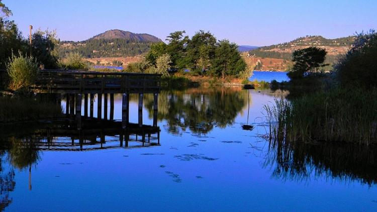 Residentes afirman ver un 'monstruo del lago Ness' canadiense