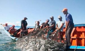 Avalan reformas para renovar permisos para pesca