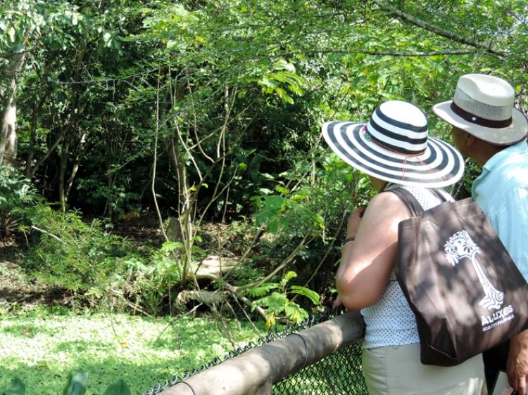 Enamórate del Ecoparque Los Aluxes