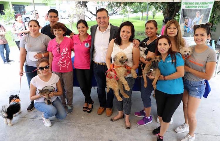 Invitan a adoptar amigos de cuatro patas en San Nicolás
