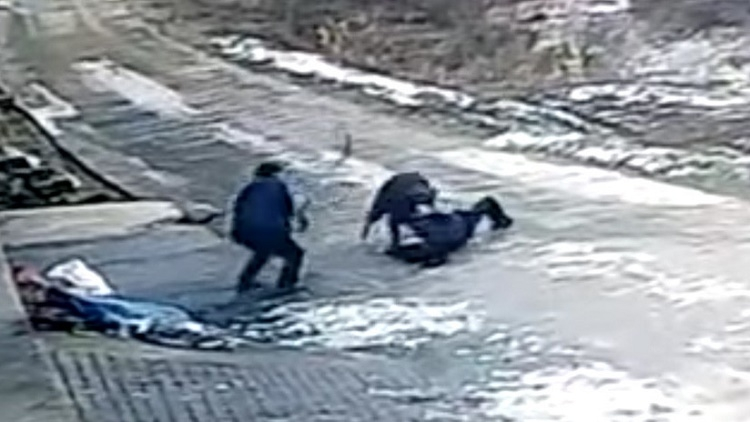 Un jabalí ataca sin piedad a un grupo de personas