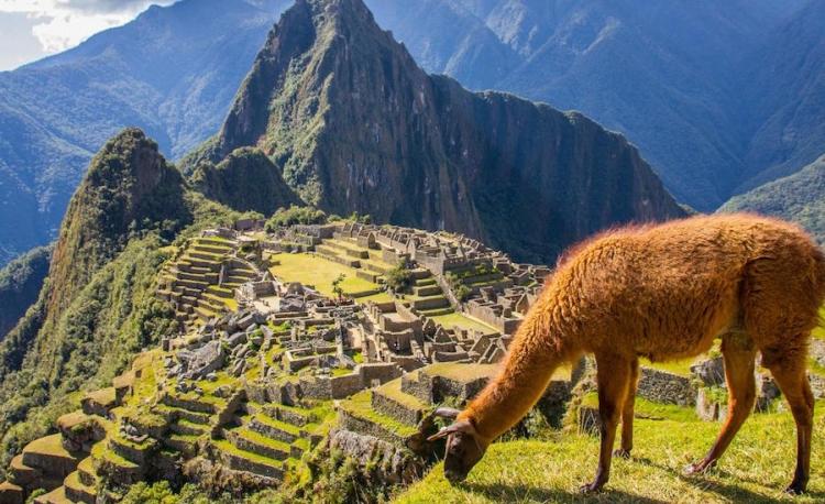 Machu Picchu reabre sus puertas al turismo desde el 1 de marzo tras cuarentena