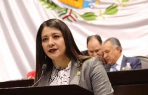 Preocupa a diputada del PRD posible desaparición del Conadis