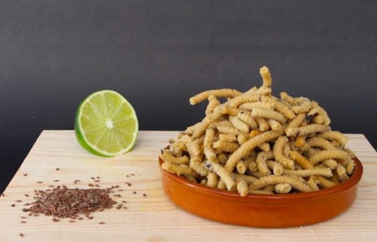 Churritos de amaranto y palomitas de sorgo, botanas saludables