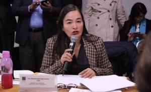 """No apoyar el dictamen sobre """"outsourcing"""" es encubrir a evasores de la seguridad social y del fisco: Verónica Juárez"""