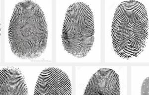 Comisión Nacional de Búsqueda tiene registro de 40 mil 180 desaparecidos