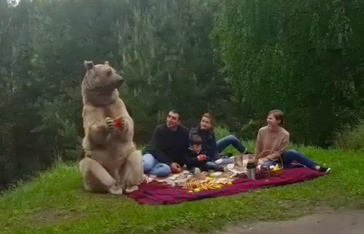 Esta familia se toma una sesión de fotos ¡Con un oso!