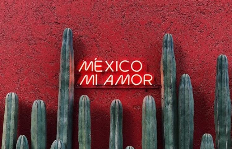 Ingresos de hogares mexicanos bajan 5,8% en 2020