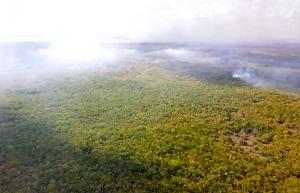 Reportan control en 30 por ciento de incendio en Sian Ka´an