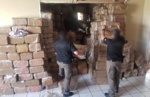 Logra FGR decomiso histórico de más de 10 toneladas de droga