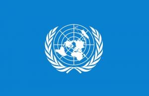 Reconoce ONU labor de México en reducción de riesgos en desastres