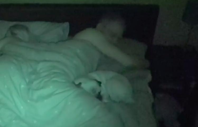 Graban como es dormir con su perro y la red enloquece