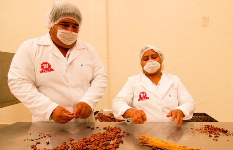 Toks celebra economía circular en el Día del Comercio Justo