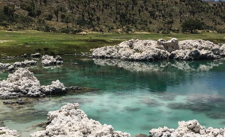 Alchichica, un pequeño cráter que se convirtió en laguna