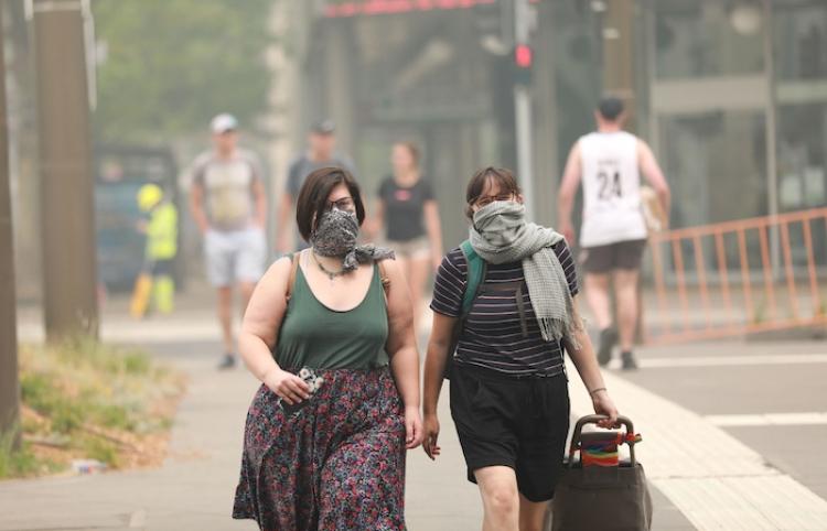 Los incendios en Australia pudieron evitarse: experto