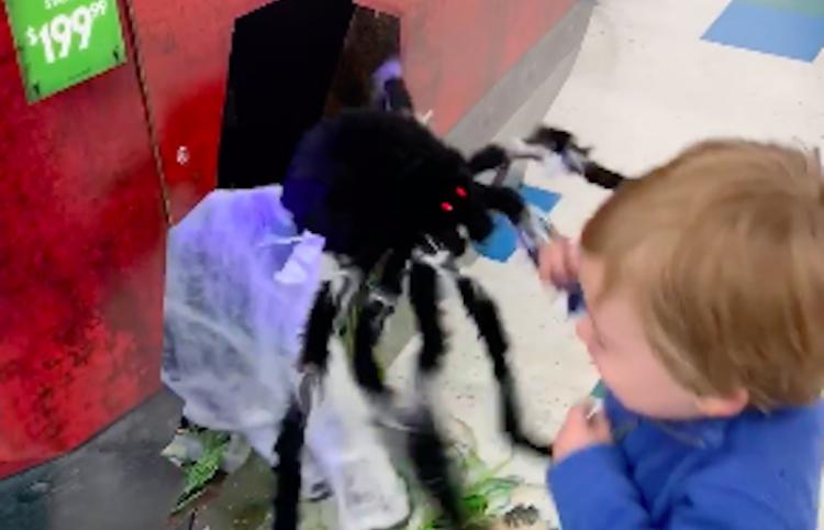Así reacciona el pequeño Charlie al ser asustado por una araña