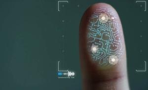 Biometría ayudó a disminuir registros duplicados del Padrón Electoral
